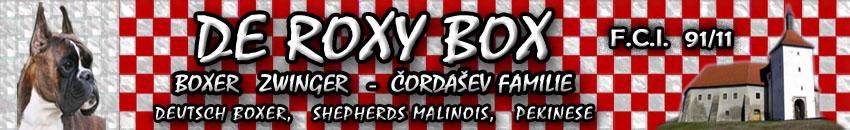 Boxer Zwinger – De Roxy Box Čordašev