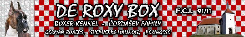 Boxer Kennel – De Roxy Box Čordašev